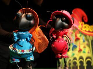 Štiri črne mravljice, Foto: Urška Boljkovac