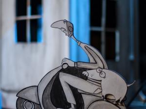 Čarovnik barv, Foto: Boštjan Lah